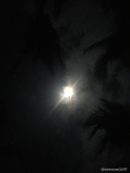 The Moon at Midnight